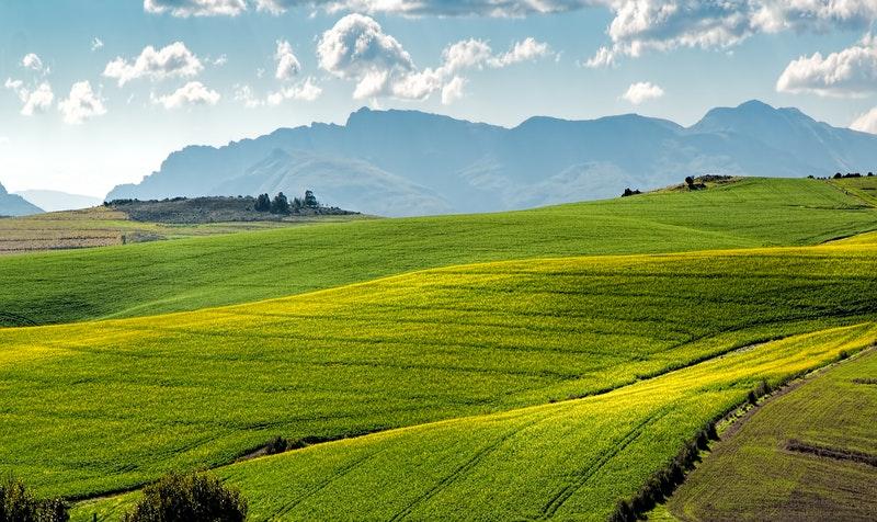 Economic Development and Environmental Awareness